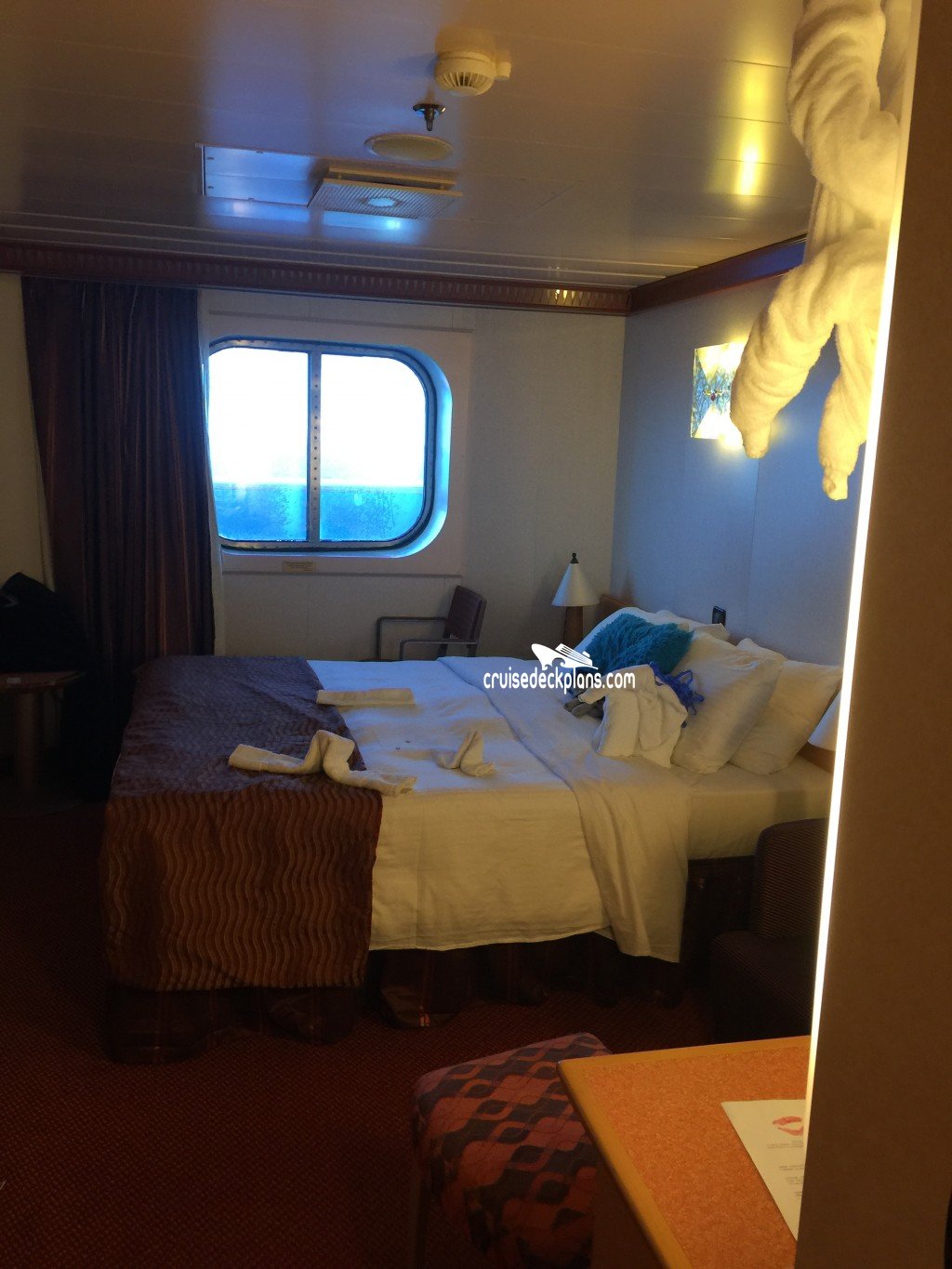 Carnival Dream Cabins Related Keywords Suggestions