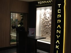 Norwegian Escape Teppanyaki Elizabeth A Dominguez