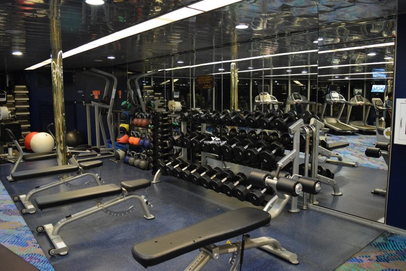 26+ Carnival Glory Fitness Center  Gif